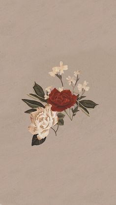 Shawn Mendes album 3