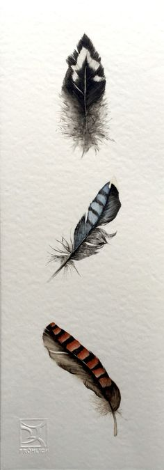 Watercolor Feathers LorenaFröhlich Mohr