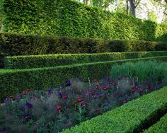 Get Rid Of Them Using These Suggestions - House Garden Landscape Boxwood Landscaping, Landscaping Tools, Landscape Architecture, Landscape Design, Garden Design, Back Gardens, Outdoor Gardens, Moroccan Garden, The Secret Garden