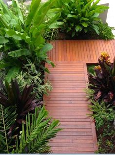 Warm Tropical Backyard Landscaping Ideas (78)