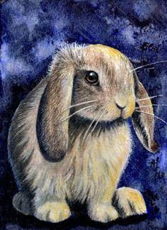 """Lop Ear Bunny Rabbit"" by Melody Lea Lamb Bunny Drawing, Bunny Art, Rabbit Art, Bunny Rabbit, Bunny Images, Bunny Pics, Painted Rock Animals, Pet Rocks, Ink Painting"