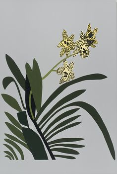 David Kordansky Gallery: Jonas Wood.