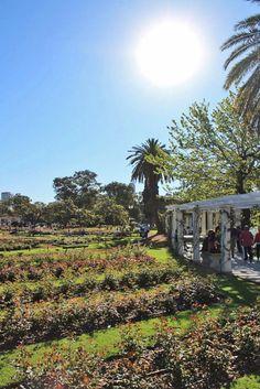 Buenos Aires é uma cidade cheia de atrações gratuitas, como o belíssimo  Rosedal no bairro de Palermo. Descubra esse e outros lugares incríveis na cidade!