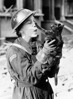 England 1940....the cat is saved and greets the air raid Warden