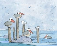 Pelicans Ink and Watercolor Drawing by studiotuesday