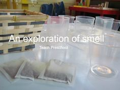 An Exploration of Smell by Teach Preschool