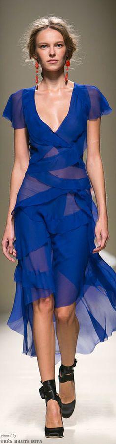 Alberta Ferretti Spring 2014 Ready-to-Wear Fashion Show