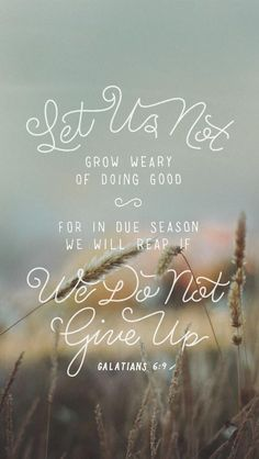 Let us not grow weary of doing good. For in due season we will reap if we do not give up.