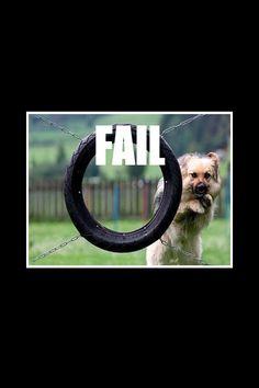 Wow that's n epic fail Wat a stupid dog lol