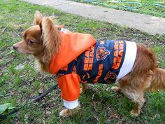 Da Chicago Bears Dog Hoodie