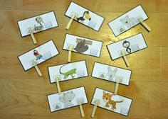 Rain Forest Animal or Cold Climate Animal Clothespin Task--Students clip one clothespin per card to indicate whether the animal shown lives in the rain forest or in a cold climate.