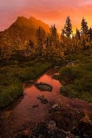 Headlight Basin, larch...: Photo by Photographer Marc Dilley - photo.net