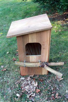 owl box plans   Building a Barred Owl Nest Box