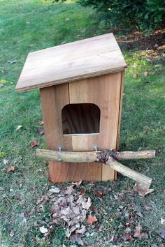owl box plans | Building a Barred Owl Nest Box