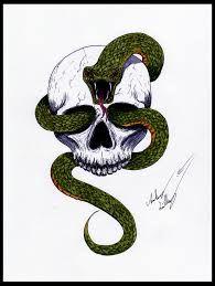 Image result for skull snake art design