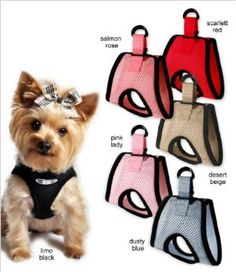 The BEST small dog choke-free step-in harness! We have tried many & this is by far the best. We've used ours for almost 1 full year now. Highly Recommend! Brand:Doggie Design Ultra USA Choke-free Dog Harness.