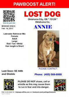 Please spread the word! Annie was last seen in Oklahoma City, OK 73109.  Message from Owner: On 2/13 our house burned down and on 2/14 our beloved lab, Annie, got away from friends who were watching her. Please help us find her by sharing the page, and getting the word out about the reward that is offered to the person leading to finding her! She was lost around SW 44th and Shields.-  Nearest Address: Near SW 44th St & S Robinson Ave