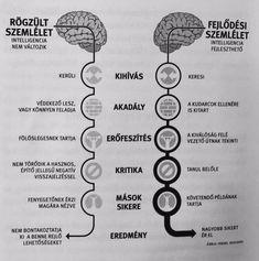 Self Image, Growth Mindset, Alter, Reiki, Psychology, Coaching, Motivational Quotes, Mindfulness, Passion