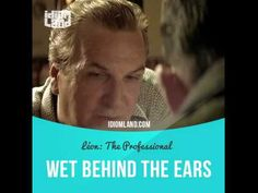 """""""Wet behind the ears"""" means """"young and inexperienced"""". Text in the clip from 'Léon': Leon, you gotta be careful with women. Remember when you arrived in this country? When I took you in, you were still wet behind the f***ing ears... and, already, you were in deep shit because of a woman. Don't forget that, Leon. #idiom #idioms #slang #english #saying #sayings #phrase #englishlanguage #phrases #expression #expressions #learnenglish #studyenglish #language #vocabulary #efl #esl #tesl #tefl"""