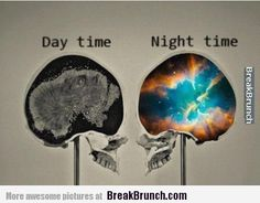 My brain during day time and night time