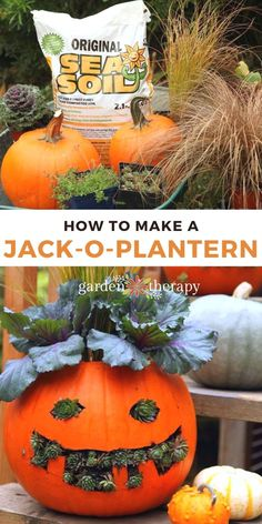 This is a fun Halloween project for gardeners! It's silly and quirky, and it puts a smile on everyone's face. Turn your Jack-o-Lantern into a Jack-o-PLANTern this year for a fun garden therapy project using these simple DIY instructions. #gardentherapy #fall #halloween #planter #pumpkin #diy #fallcrafts Halloween Tutorial, Halloween Activities For Kids, Halloween Crafts For Kids, Holidays Halloween, Fall Halloween, Diy Garden Bed, Thanksgiving, Autumn Garden, Pumpkin Decorating