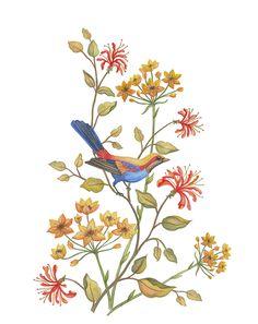 Bird drawing by Jackie Von Tobel