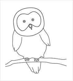 bird outline template owl zentangle pinterest bird outline