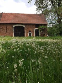 old barn in spring
