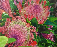 "Saatchi Online Artist: claudia gurwitz; ""Proteas"""