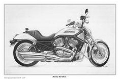Harley Davidson motor cycle - David Carlile