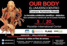 Asiste a la exposición Our Body