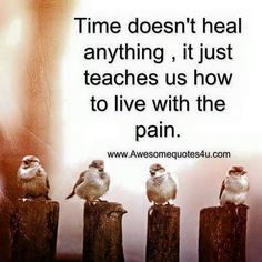Time doesn't heal anything, it just teaches us how to live with the pain. Not very comforting because this pain is killing me.