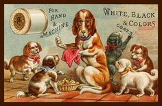 Trade Card J P Coats Thread Puppies Dog Sewing