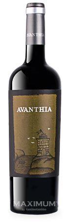 Avanthia Mencía/ Taninotanino - Vinos Maximum