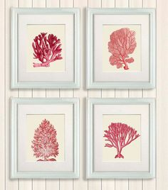 Set of 4 Red Coral Prints  Nautical Print Art by NauticalNell