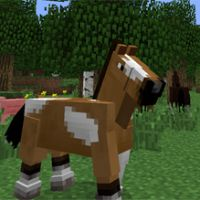 (1) Czy dopasujesz zwierzęta z Minecrafta do obrazków?