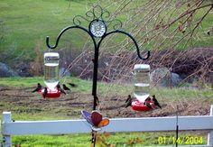 Anna's Hummingbirds, Springville Ca. Hummingbirds, Wind Chimes, Beautiful Things, Outdoor Structures, Outdoor Decor, Garden, Home Decor, Homemade Home Decor, Garten