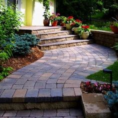 Front Yard Pathway