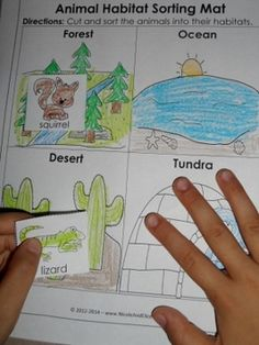 Week 3- This is a worksheet on the different types of habitats animals reside in. The students can color, cut out, and glue the matching animals with their habitat.
