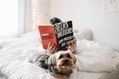 BELAS MALDIÇÕES (NEIL GAIMAN & TERRY PRATCHETT  <3      http://melinasouza.com/2017/05/01/belas-maldicoes-neil-gaiman-terry-pratchett/    #Book  #Livro  #MelinaSouza  #Serendipity #mug  #Caneca