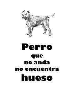 dog dicho