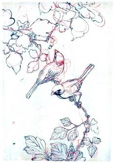 Sweet Line Drawings of birds available through Vintage Printable. Would make a sweet tattoo