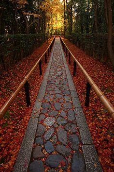 bluepueblo: Stone Walkway, Kyoto, Japan photo via kessenza