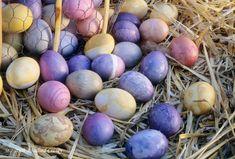 natural-dye-easter-eggs
