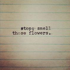 Short Flower Quotes, Flower Qoutes, Short Sayings, Short Quotes, Flower Boutique, Quotable Quotes, Wooden Signs, Laughter, Graffiti