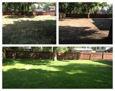 Here is the backyard of a completely new yard makeover in Holladay Utah. The old was taken out, yard graded, and new sod planted.