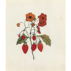Strawberry Flowers, Andy Warhol, Circa 1956 #andywarhol