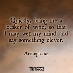 Your Favorite Wine Quotes Wine Quotes, Wine And Beer, Say Something, Awkward Moments, Wine Tasting, Wine Recipes, Clever, Bring It On, Mindfulness