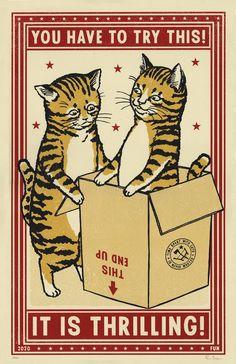 Crazy Cat Lady, Crazy Cats, Drunk Cat, Maurice Careme, Video Chat, Matchbox Art, Cat Posters, Cat Love, Cool Cats