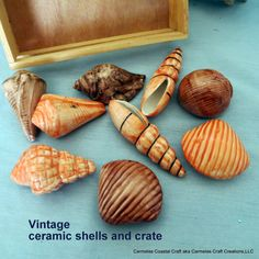 Vintage ceramic seashells with crate_Beach by CarmelasCoastalCraft